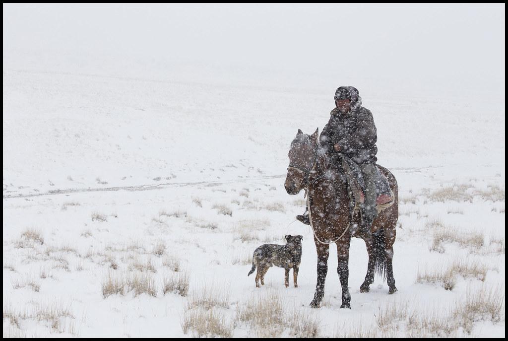 Photo du jour Kirghizstan Neige Steppe