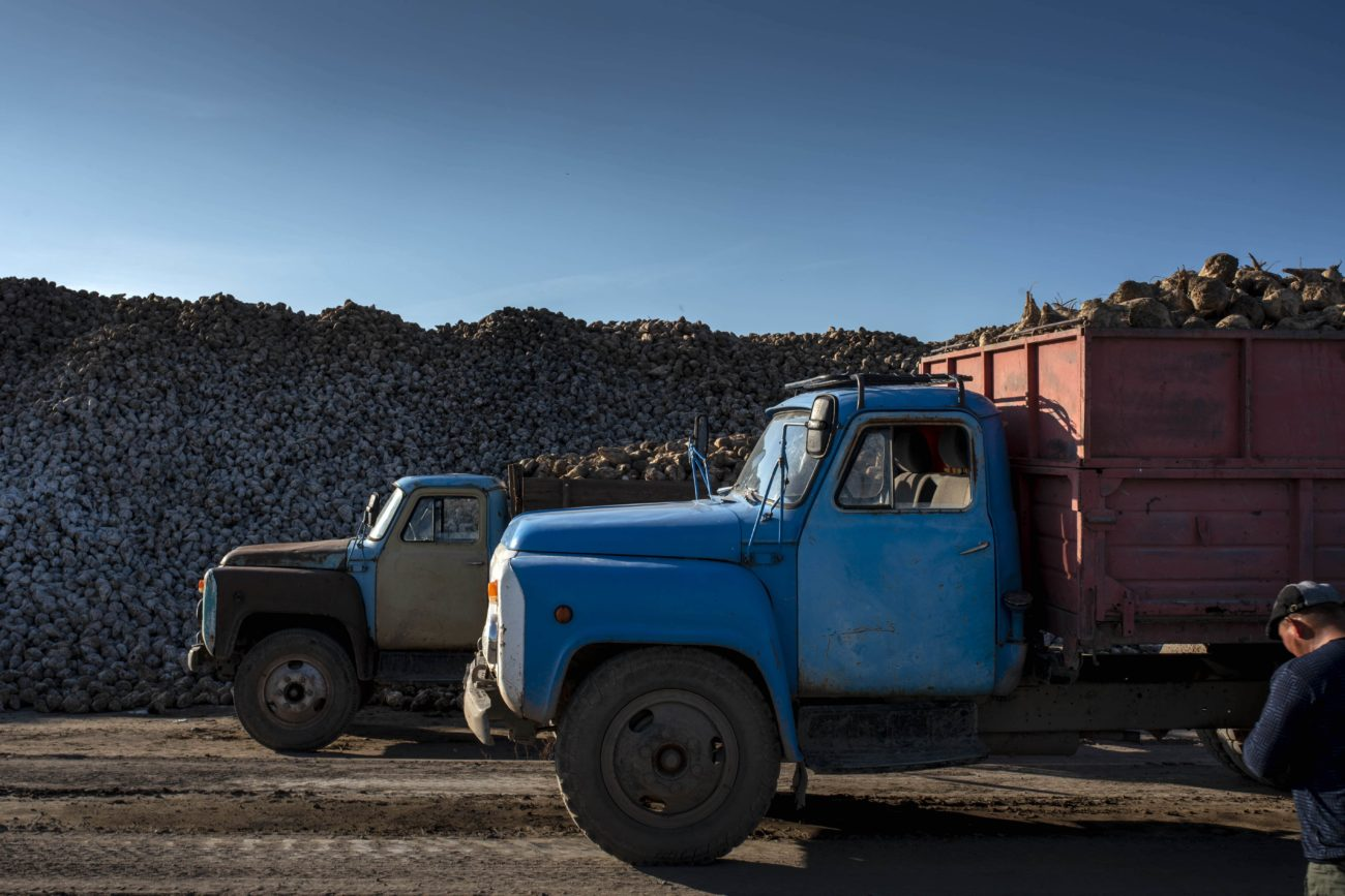 Kirghizstan Camion Betteraves Chauffeur