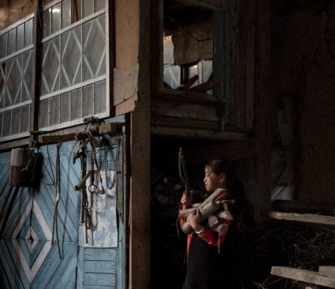 Ramasser du bois maison jeunesse kirghizstan