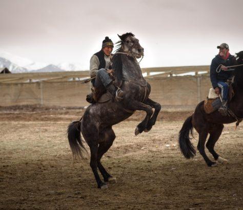 Photo du jour Kirghizistan Kok-boru