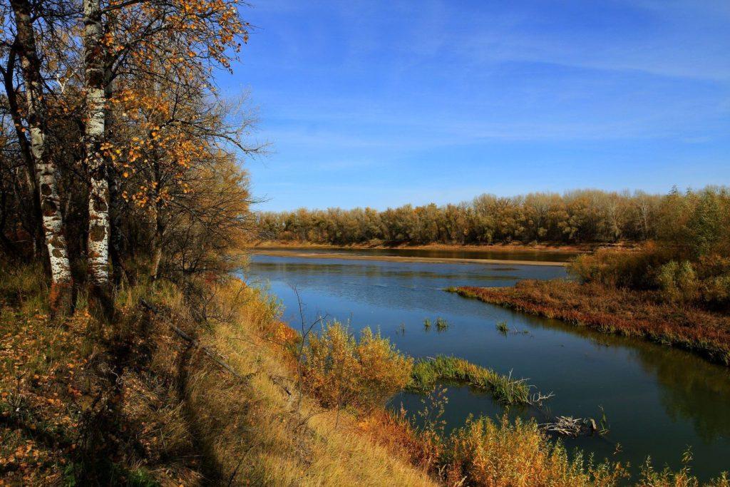 Environnement Oural Kazakhstan Fleuve Forêt