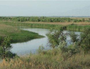 Tigrovaya Balka Tadjikistan Réserve naturelle Environnement