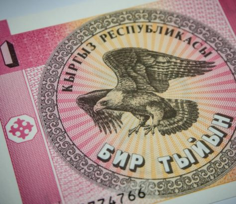 Som Monnaie Kirghizstan Linpico Aide Budget Finances