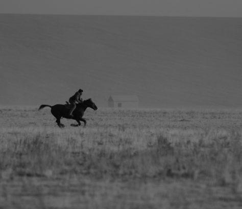 Cavalier, Kazakhstan, Turkistan, Cheval, Steppe