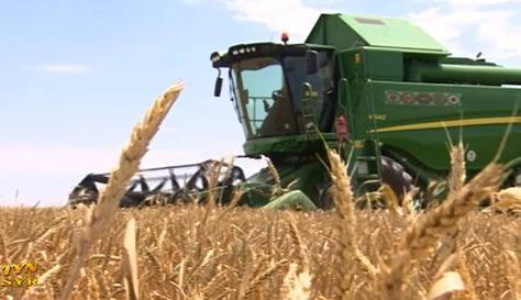 Tracteur champ de blé Turkménistan
