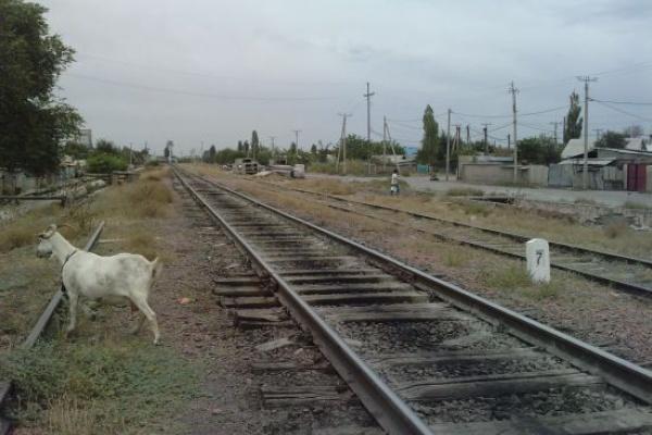 www.uniterre.com/membre/autonomade/album/dossier,petites+et+grandes+curiosités/photo,chemin+de+fer+kirghize/1052994/