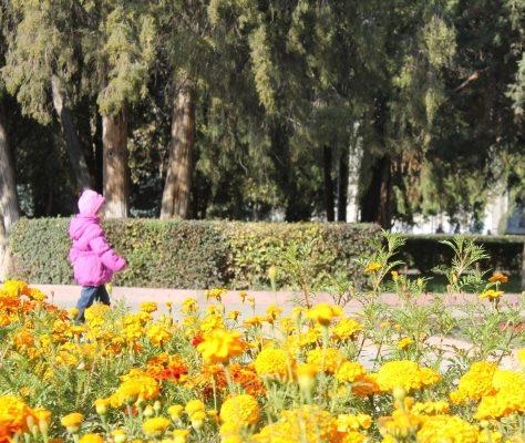 Photo Parc de Bichkek