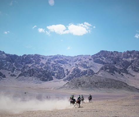 Tadjikistan Minorité kirghize Cheval